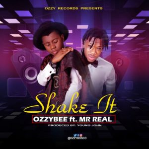 Download OzzyBee Shake It ft Mr Real Mp3