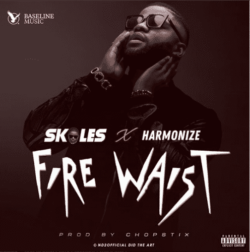 Download Mp3 Skales Fire Waist ft Harmonize