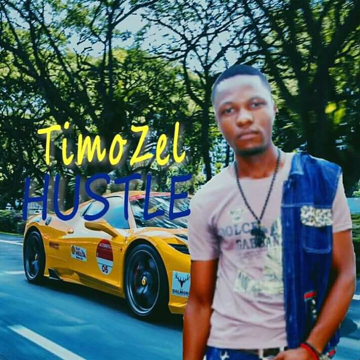 Download Music Mp3 Timozel Hustle