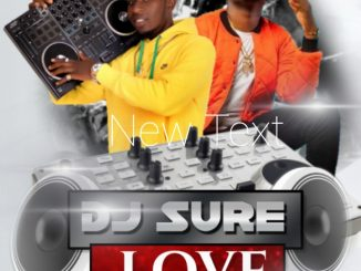 Djsure - Love For Nedro Mix Download