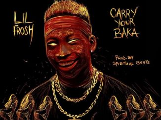 Lil Frosh – Carry Ur Baka Mp3 Download Audio