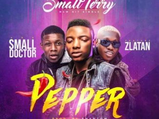 Small Terry - Pepper ft. Zlatan Ibile, Small Doctor Mp3 Download Audio