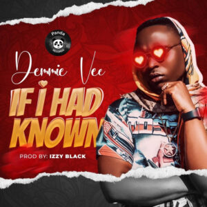 Download Demmie Vee If I Had Known Mp3