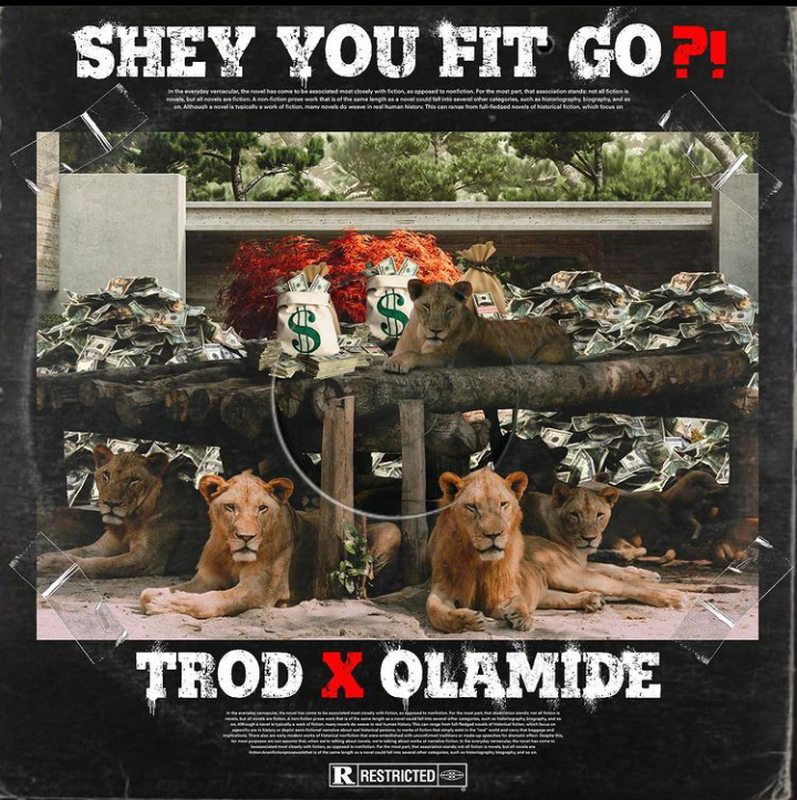 Download Trod x Olamide Shey You Fit Go? Mp3